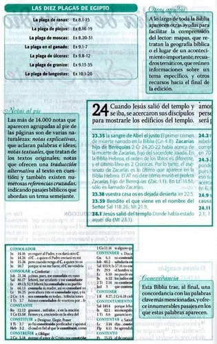 biblia de estudio esquematizada rvr grande tapa dura #103810