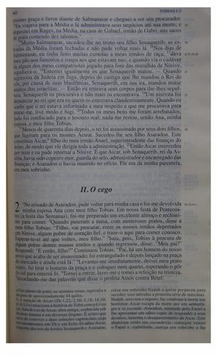 bíblia de estudo de jerusalém original com capa plástica