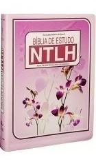 bíblia de estudo - evangélica - feminina