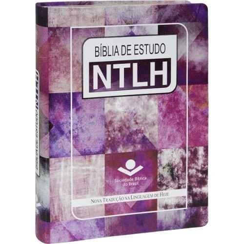 bíblia de estudo ntlh grande 17x23,5 luxo feminina