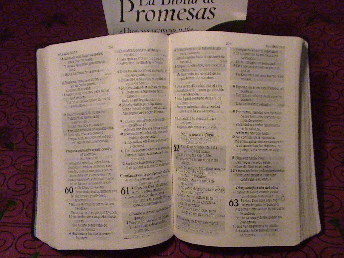 Biblia De Promesas Letra Grande Piel Café Reina Valera
