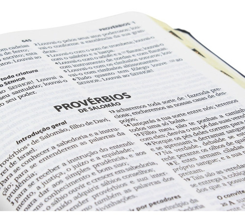 bíblia evangélica letra grande capa luxo com índice lateral