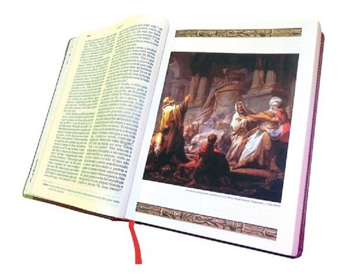 bíblia ilustrada preta grande luxo ave maria
