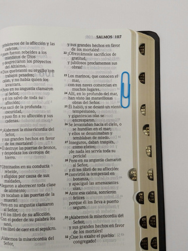 biblia letra grande índice negra reina valera contemporánea