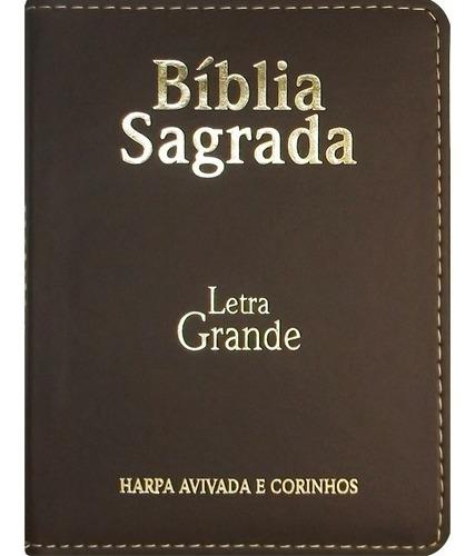 bíblia sagrada com harpa e corinhos - tamanho médio - zíper