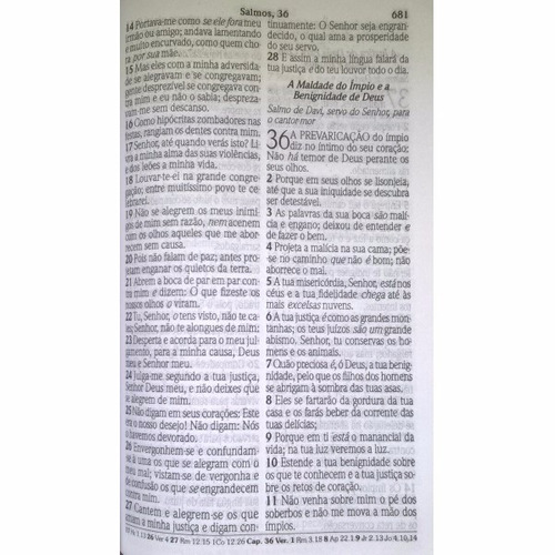 bíblia sagrada letra gigante com harpa cristã orquídea