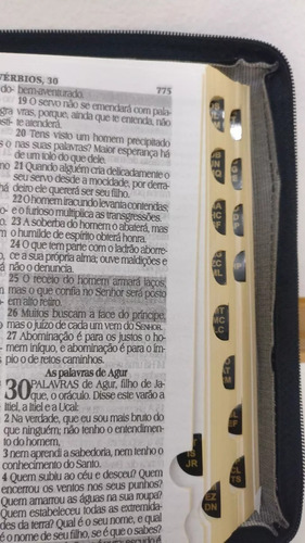 bíblia sagrada letra grande com harpa - capa ziper