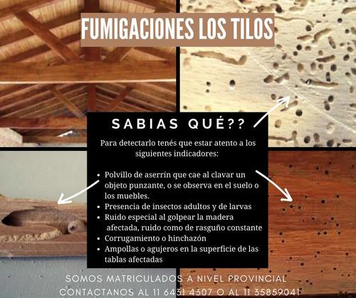 bicho taladro - fumigación plagas - $600 x mts2 + viaticos