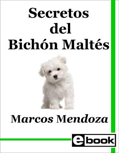 bichon maltes - libro entrenamiento cachorro adulto crianza