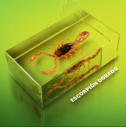 bichos - coleccionable no.1 : escorpión dorado - r b a
