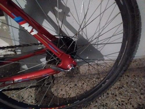 bici bicicleta rod