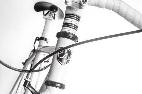 bicicleta evoluta tipo fixie