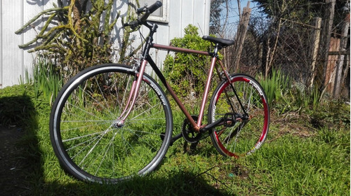 bicicleta fixie color camaleón