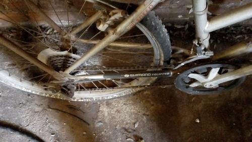 bicicleta para dama for bell