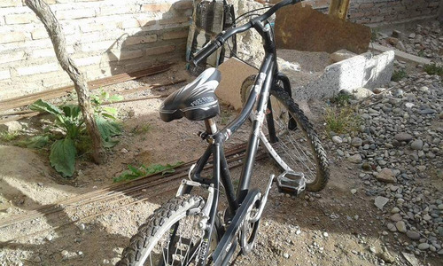 bicicleta rally r24