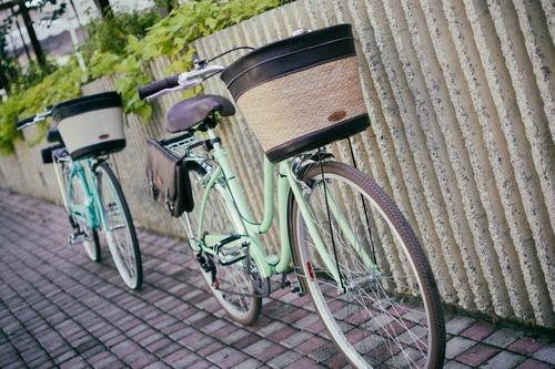 bicicleta retro-vintage dama y caballero r 26