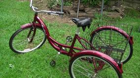 3806f637123 Bicicleta Triciclo Usada Campinas Usado no Mercado Livre Brasil