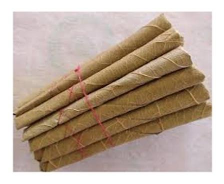 bidi india cigarritos ganesha beedies cigarros hindi