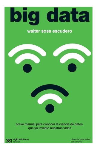 big data - walter sosa escudero