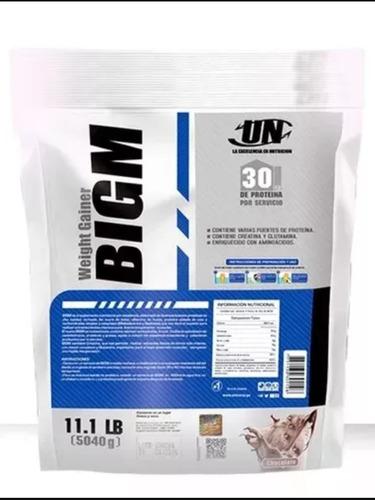 bigm 5 kg proteina ganador de masa (cajamarca)