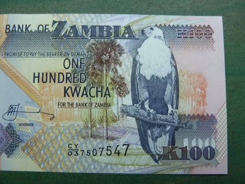 billete 100 kwacha 2009 zambia ( foto referencial ) - vp