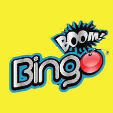 bingo boom software profesional incluye 1200 cartones