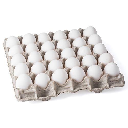 biodegradable pollo huevo pisos para pequeño a extra - gran