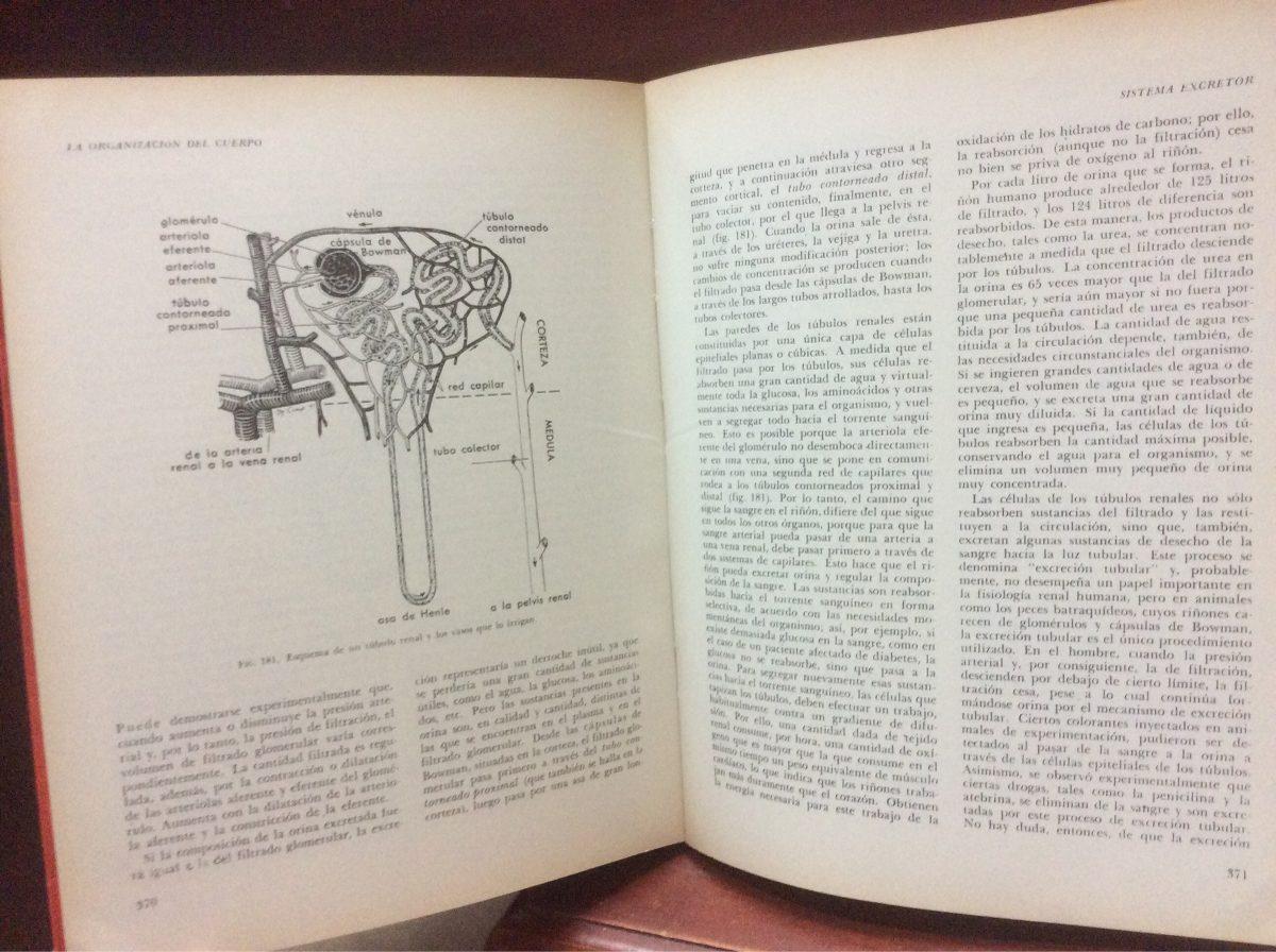 Biologia de claude a. villee - Descargar libro gratis