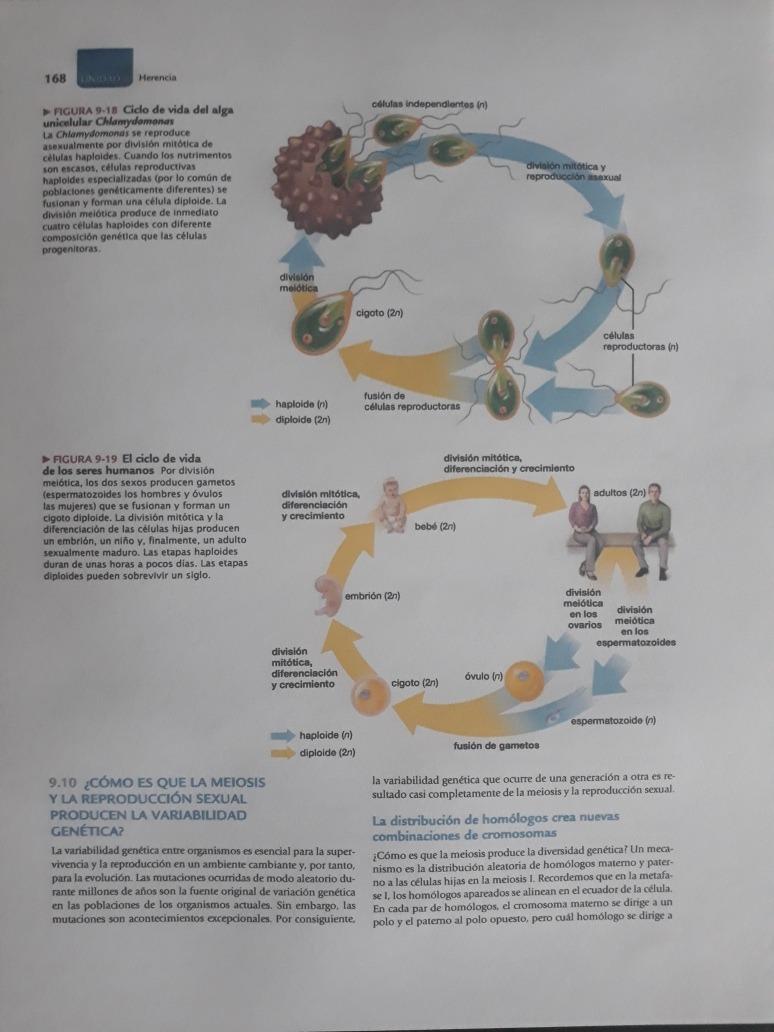 Biologia La Vida En La Tierra Con Fisiologia 9 Edicion - $ 24.000 en ...