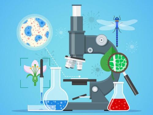 bioquímica: clases, asesoría y tutorías.