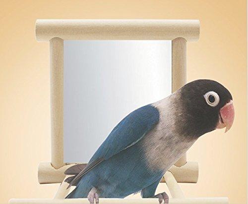 bird swing parrot cage toysswing juego colgante con espejo p