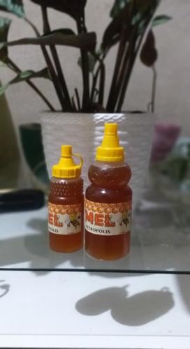 bisnaga de mel (puro) 500mg