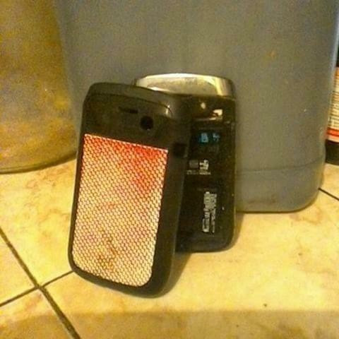 blackberry bol6