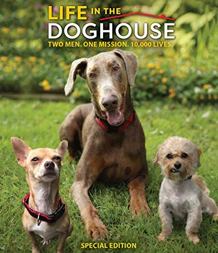 blu-ray : life in the doghouse (special edition)