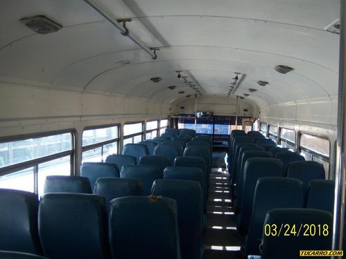 blue bird autobuses