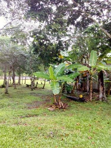 boa chácara murada no jardim suarão, em itanhaém - ref 4327
