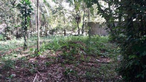 boa chácara no jardim são fernando, em itanhaém - ref 4430