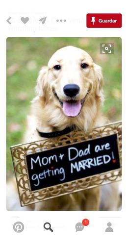 boda cartel cortejo perros mascotas matrimonio detalle láser