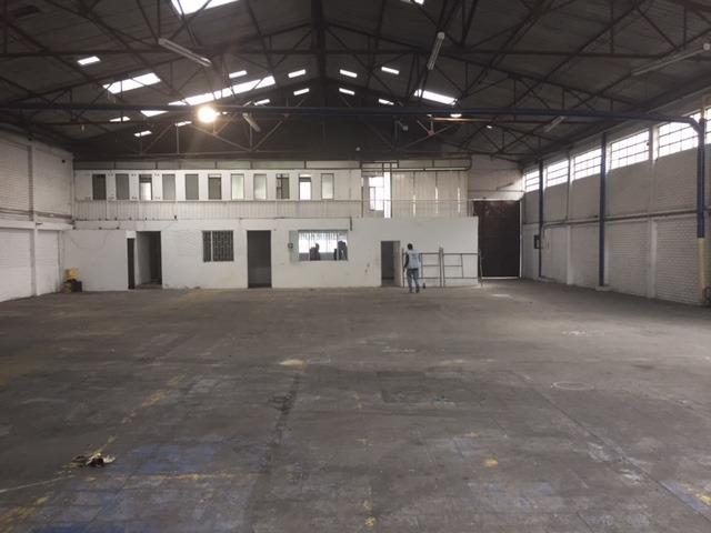 bodega industrial montevideo