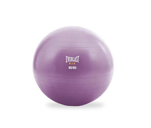 45374a6a1b Bola De Pilates 55cm Rosa Com Bomba De Ar Everlast - R  115