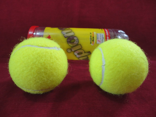 18f8b545f Bola De Tênis Wilson Championship - Modelo Acessível - R  30