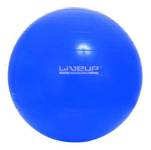 bola pilates 65 cm suiça ball yoga treino funcional academia