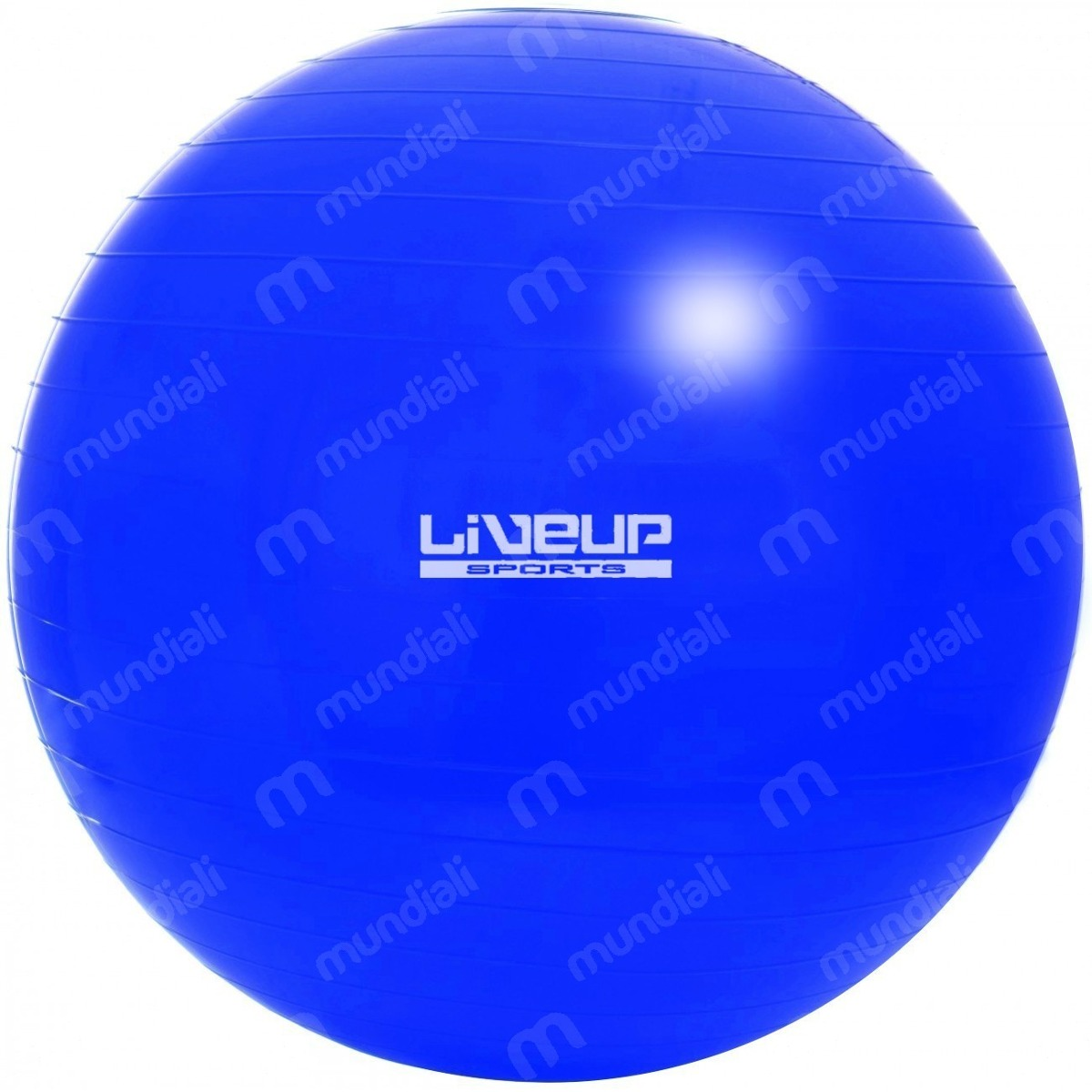bola suiça 65 cm pilates yoga fitness cor azul alongamento. Carregando zoom. ea9fc296d77b4