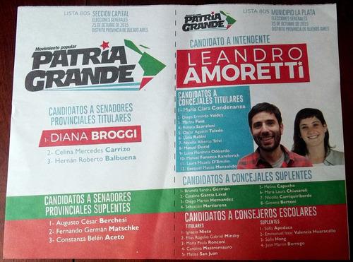 boleta elecciones 2015 movimiento popular patria grande leer