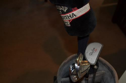 bolsa de golf con driver y putter