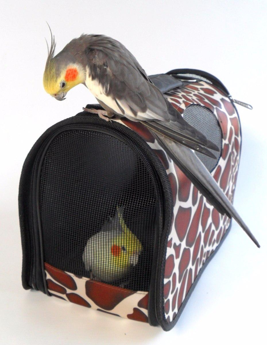 Bolsa De Transporte Para Animais   Meemo : Bolsa transporte animais calopsita desmont?vel r