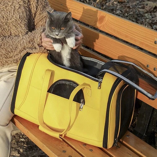 bolso transporte mascotas pet gato cachorro pasear viajar
