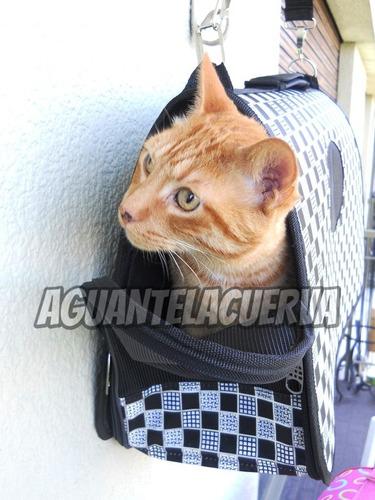 bolso viaje mascotas transportin peque envio gratis caba web