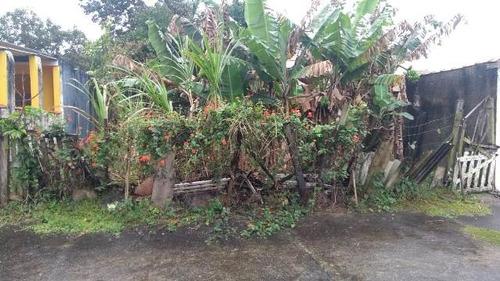 bom terreno alto em avenida no balneario gaivota - ref 4555