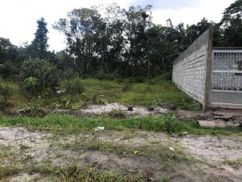 bom terreno aterrado c/ escritura em itanhaém-sp, litoral!!!